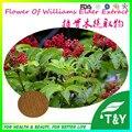 Qualidade superior Flor De Williams Elder Extrato com frete grátis 700g