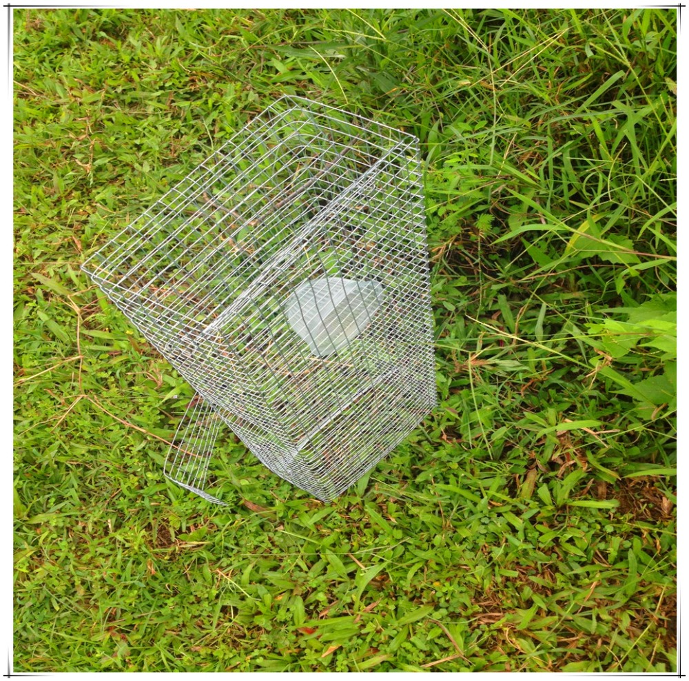 Live Catch Snake Trap /Snake Gabion/Snake Cage/Naja Trap /Naja Cage With Low Price And High Quality Free Shipping On Sale