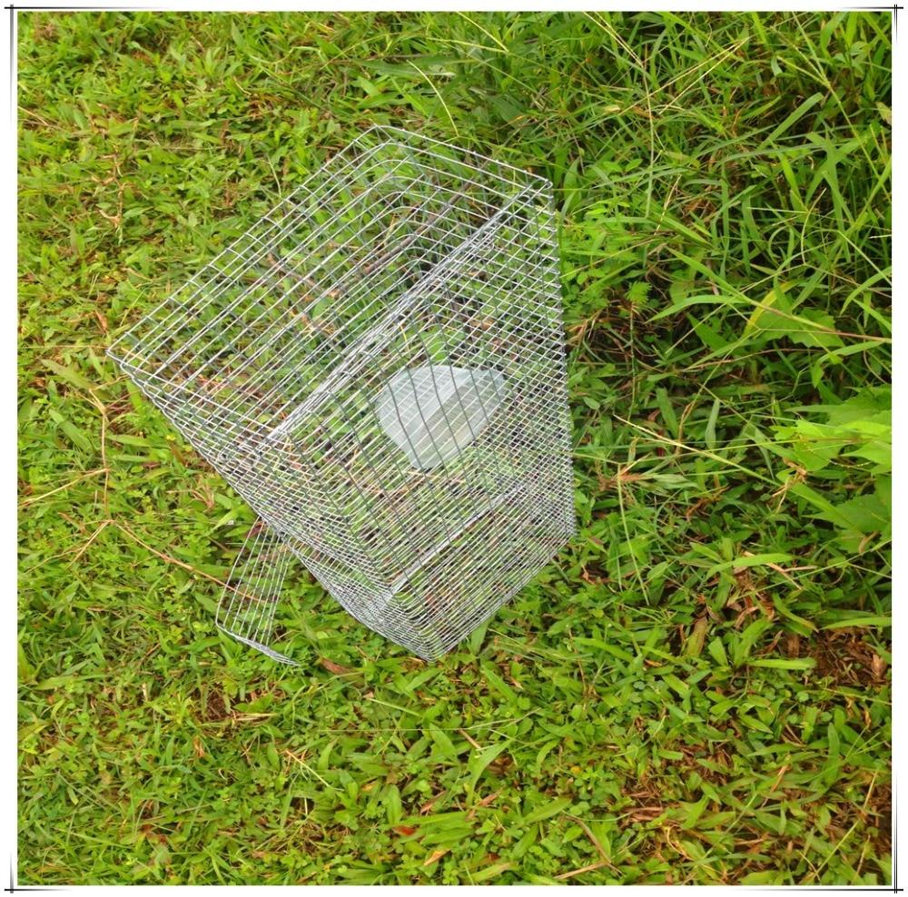 Live Catch Snake Trap / Snake Gabion / Snake Cage / Trappola Naja / Naja cage con prezzo basso e alta qualità spedizione gratuita in saldo