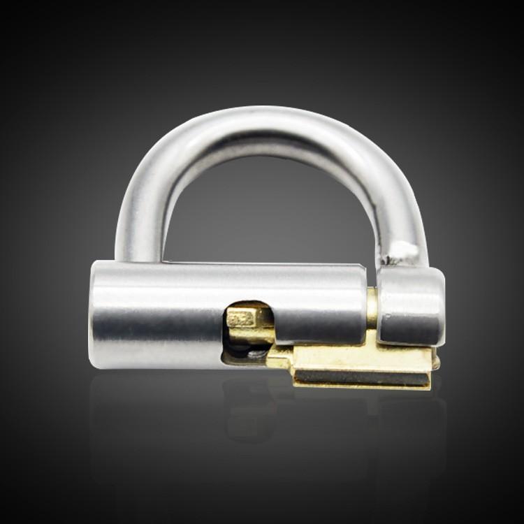 penis lock (4)