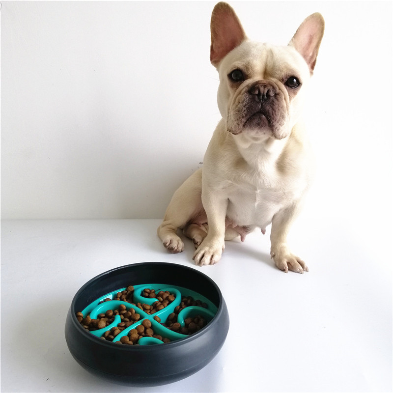 dog bowls slow feeder (28)