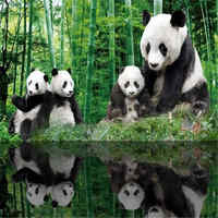 3D Custom Photo Wallpapers HD Chinese Panda Woods Wall Murals Bamboo Tree Forest Wall Papers for Living Room Bedroom Home Decor