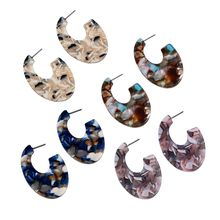 Round Trendy Semicircle Earrings Turtle Resin Material For Women Elegant Design Jewelry