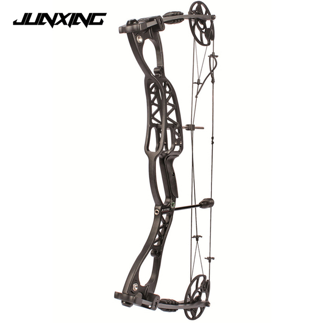 High Quality Adjustable 40-65 LBS Compound Bow Arrow Speed 300 feet/s for Hunting Shooting Archery
