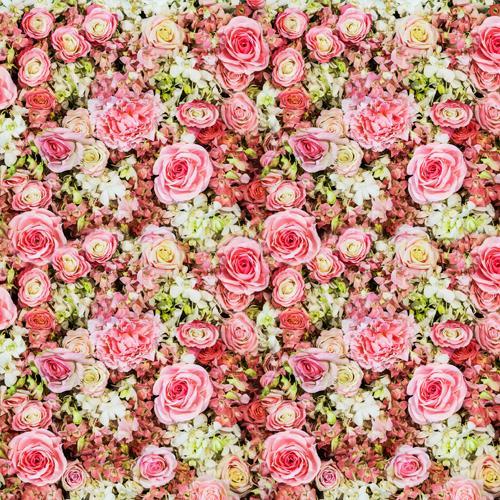 Huayi Parete Floreale Rosa Fiori Neonati Sfondi Foto Stampa Studi