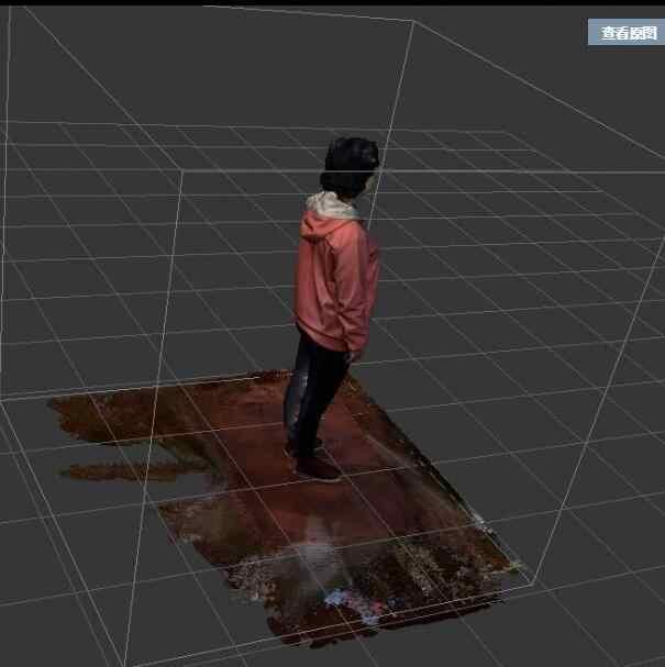 Detail Feedback Questions about 3D scanner 3D scanner 3D