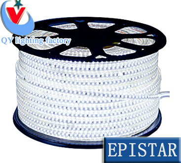 220V SMD 3014 led strip flexible light 1m 2m 3m 4m 5m warm white/white/Blue Power plug ,120leds/m waterproof led Strips