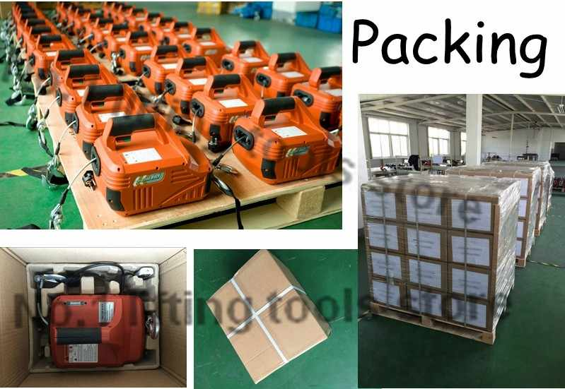 Mini electric hoist / 220V wireless remote control / small household crane  / hoist winch 100-450kg wire rope 4 6M