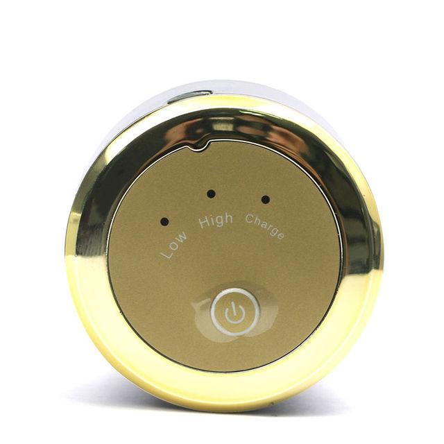 2-In-1 Mini Facial Cleansing Brush