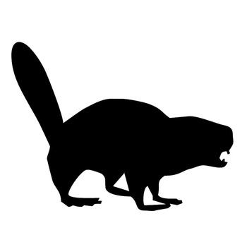 15.2*11.6CM Angry Beaver Outline Creative Car Stickers Vinyl Waterproof Car Body Decal Black/Silver S1-2844 image