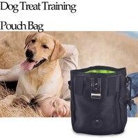 개 치료 파우치 훈련