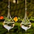 De água de vidro de garrafa vaso terrário hidropônico planta DIY jardim de casamento decoração de mesa