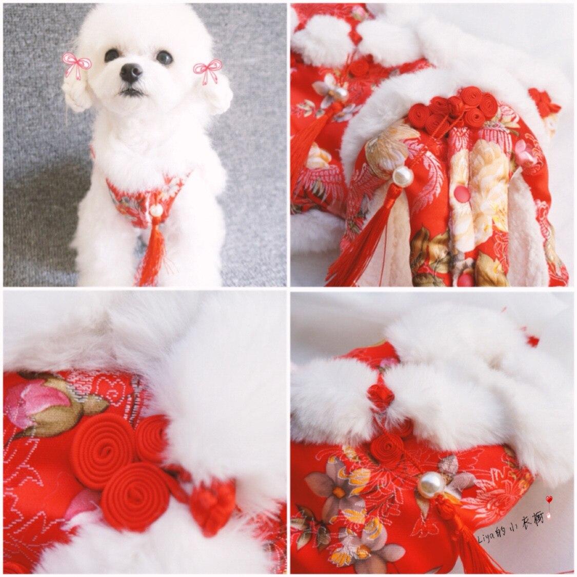 Chinese New Year Chinese new year [] Dog Costume New Pet Dog Costume Teddy ~ rabbit costume bear clothes