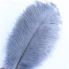 Wholasale Grey Gray Ostrich Feathers for Crafts 15-70cm Carnival Costumes Wedding Decorations Plumes plumas