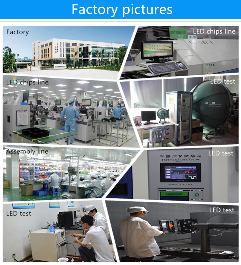 LED light factory pictures 800