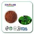 100% natural Puro polvo Epimedium, Horny Goat Weed Extracto En Polvo, 20% Icariin