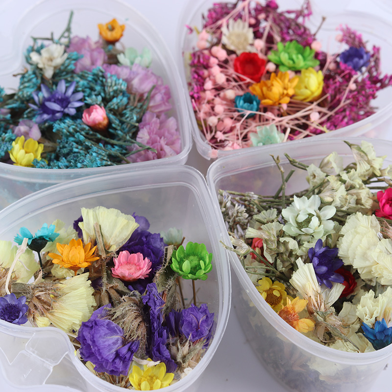 1 Box Dried Flowers Nail Decoration Mixed Preserved Flower With Heart Shaped Box DIY Manicure 3D Nail Art Decorations in Rhinestones Decorations from Beauty Health