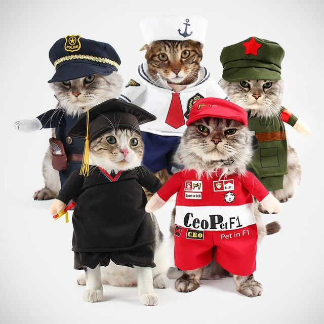 funny dog cat costumes boxer doctor nurse cosplay suit pet clothing halloween uniform clothes