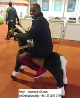 Large Size Amusement Equipment Adults Kids Mechanical Animal Horse Rides