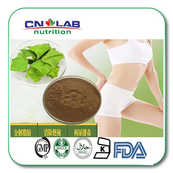 все цены на  Nuciferine/Lotus Leaf Extract/Lotus Leaf P.E. 500g/bag with High Quality  в интернете