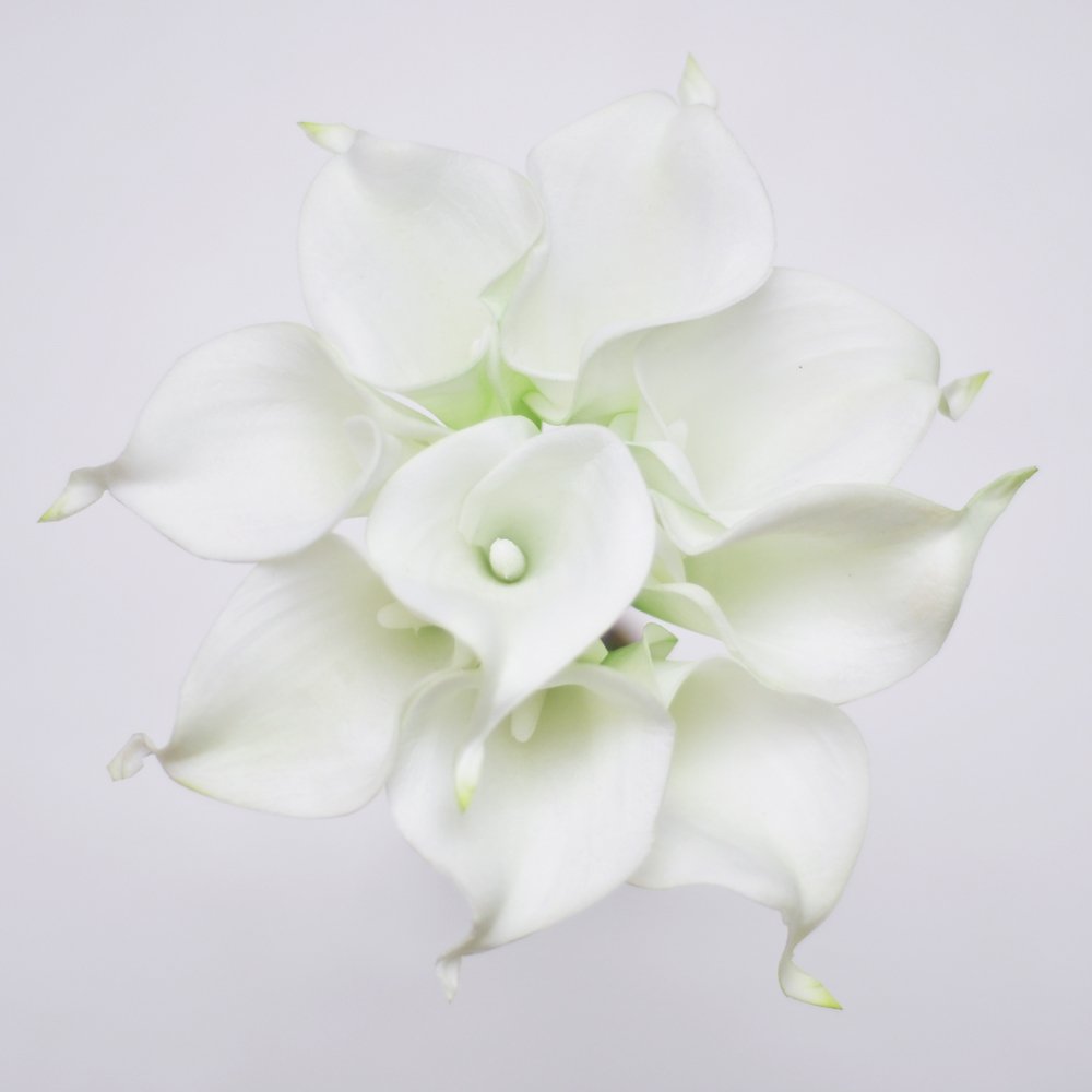9pcs white ivory real touch artificial picasso calla lilies flower 9pcs white ivory real touch artificial picasso calla lilies flower arrangement for wedding bouquet and home decor in wreaths garlands from home garden izmirmasajfo
