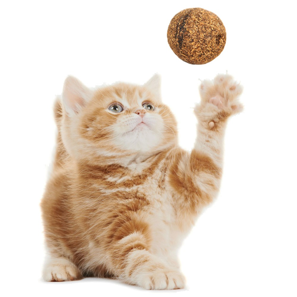 100% Natural Catnip Treat Ball