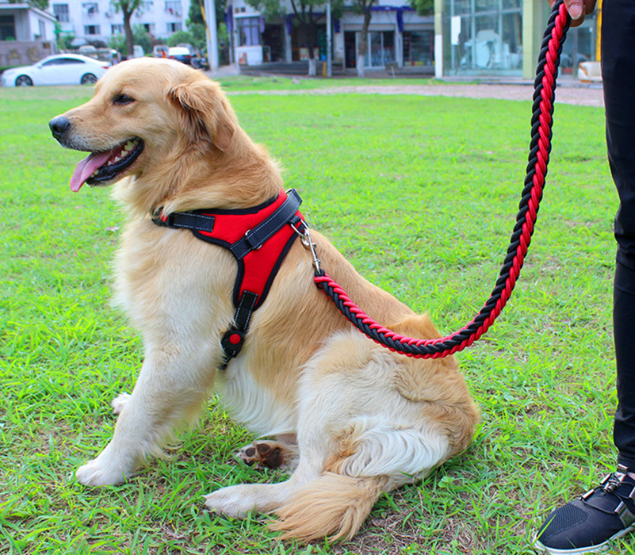 Nylon Harnesses for Dog Thicken Dogs Harness High Quality Harnais Chien Outdoors Harnas Hond Harness Leash Suit for Large Dog ...