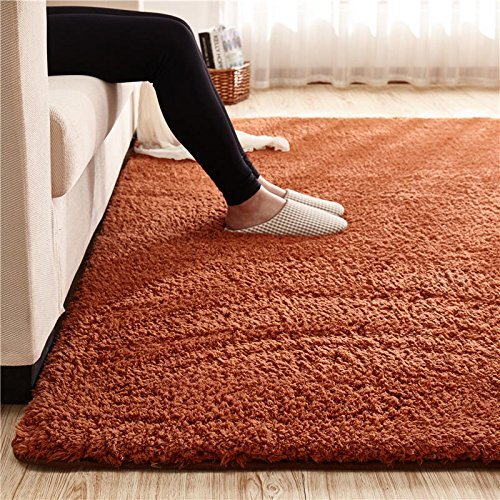 Orange Fluffy Rug Area Rug Ideas