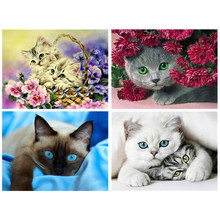 Diamond Painting Diamond embroidery 5d diy full square animals cat - diamond mosaic diamond paint daimond painting(China)