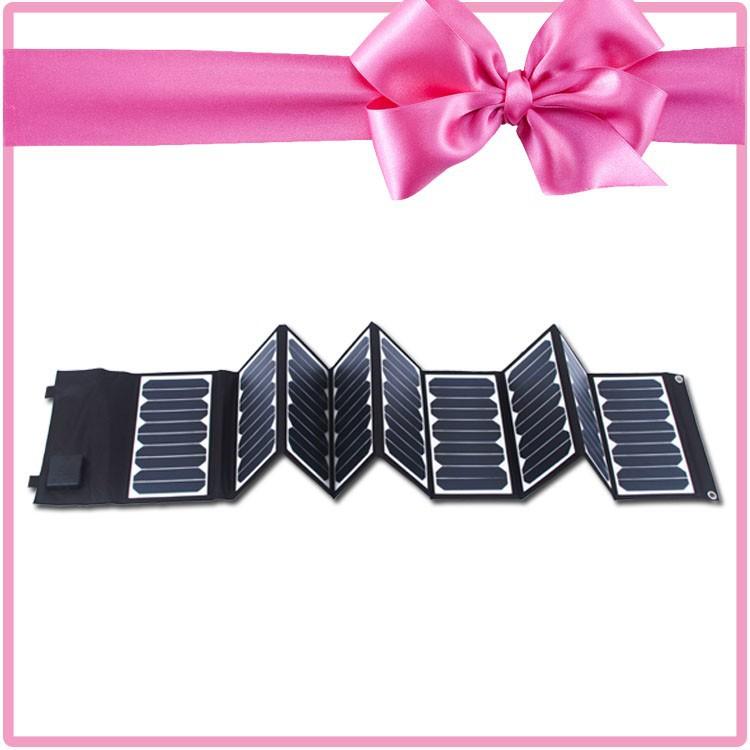 60W Sunpower Solar Panel
