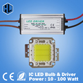 Wholesales 10pcs 10W 20W 30W 50W 100W LED Integrated High power LED bulb COB Chips led lamps withe/RGB+power supply driver