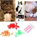 20 pcs Colorido Cães Gatos Gatinho Patas Aliciamento Prego Tampão de Borracha Macia Capa Paws Pet Prego Caps Garra Pet Fornecimentos