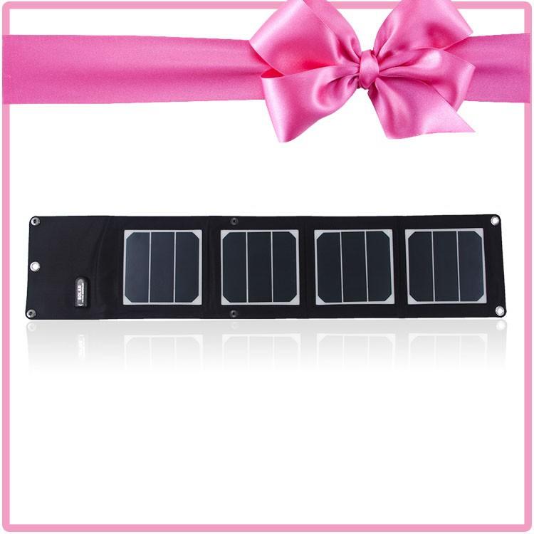 13W Sunpower Solar Panel