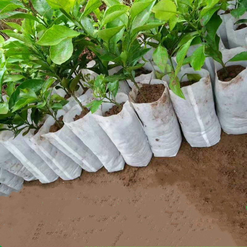 100PCS Seedling Plants Nursery Bags Organic Biodegradable Grow Bags Fabric Eco-friendly Ventilate Growing Planting Bags