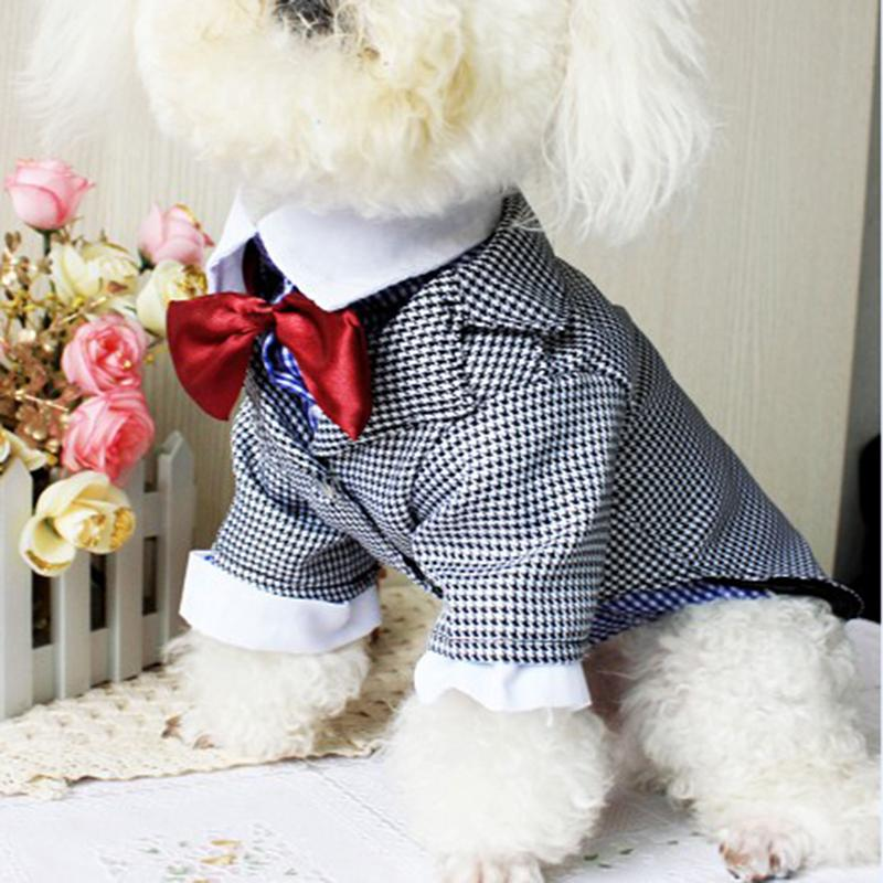 Popular Wedding Dog Suit-Buy Cheap Wedding Dog Suit lots from ...