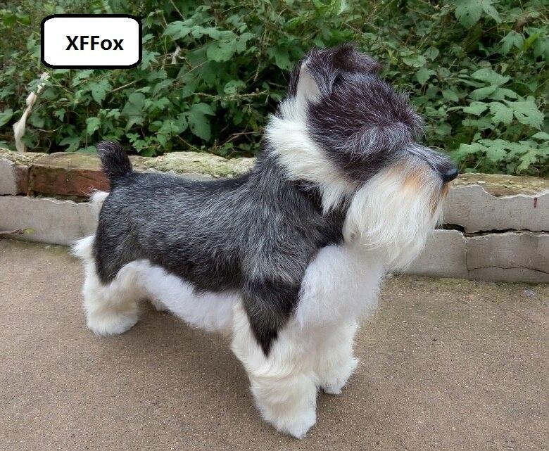 Grande vraie vie Schnauzer chien modèle plastique & fourrures simulation gris chien poupée cadeau environ 47x42 cm xf1631