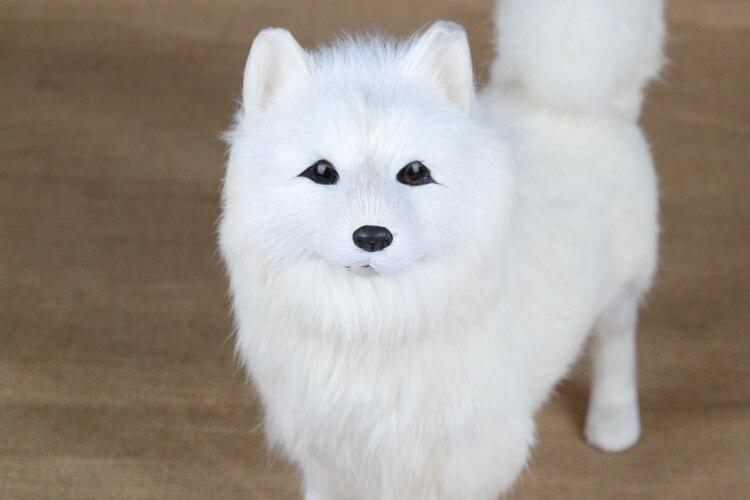 Modèle de chien samoyed blanc de simulation, 30x25 cm plastique et fourrures debout samoyed chien artisanat décoration de la maison jouet cadeau de noël w5725