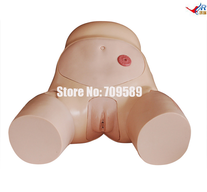 цена на Advanced Famale Urethral Catheterization Simulator, Urethral Catheterization Manikin