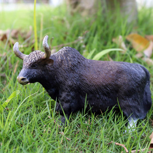 Image 5 - Oenux Original Farm Animals Model Simulation Cattle Cow Calf Bull OX PVC Animal Action Figure Collection Educational Toy For Kid