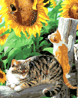 Frameless Cat Butterfly Animal DIY Painting By Numbers Kits Coloring Oil Painting On Canvas Drawing Home