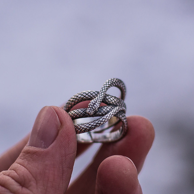 Sindlan Exaggerated Vintage Silver Snake Ring for Men Cool Fashion Punk Male Finger Ring 17mm to 21mm Man Animal Charm Ring 1