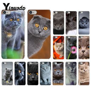 Yinuoda British Shorthair cat Painted Phone Case for iphone SE 2020 5 5Sx 6 7 7plus 8 8Plus X XS MAX XR Capa(China)