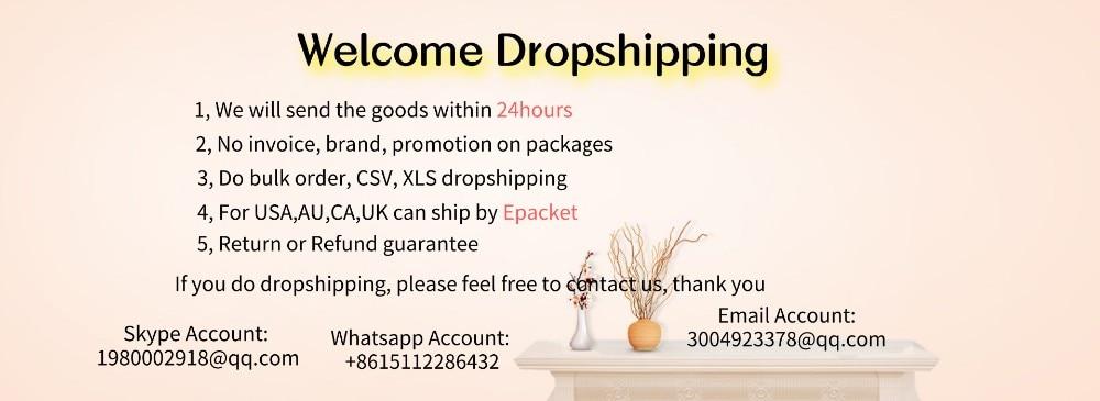 dropshipping (1)