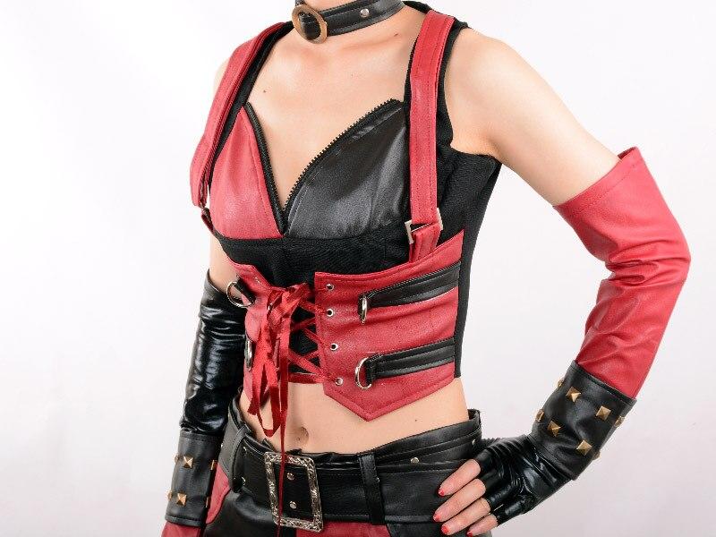 Batman arkham city secret wishes sexy harley quinn asylum costume