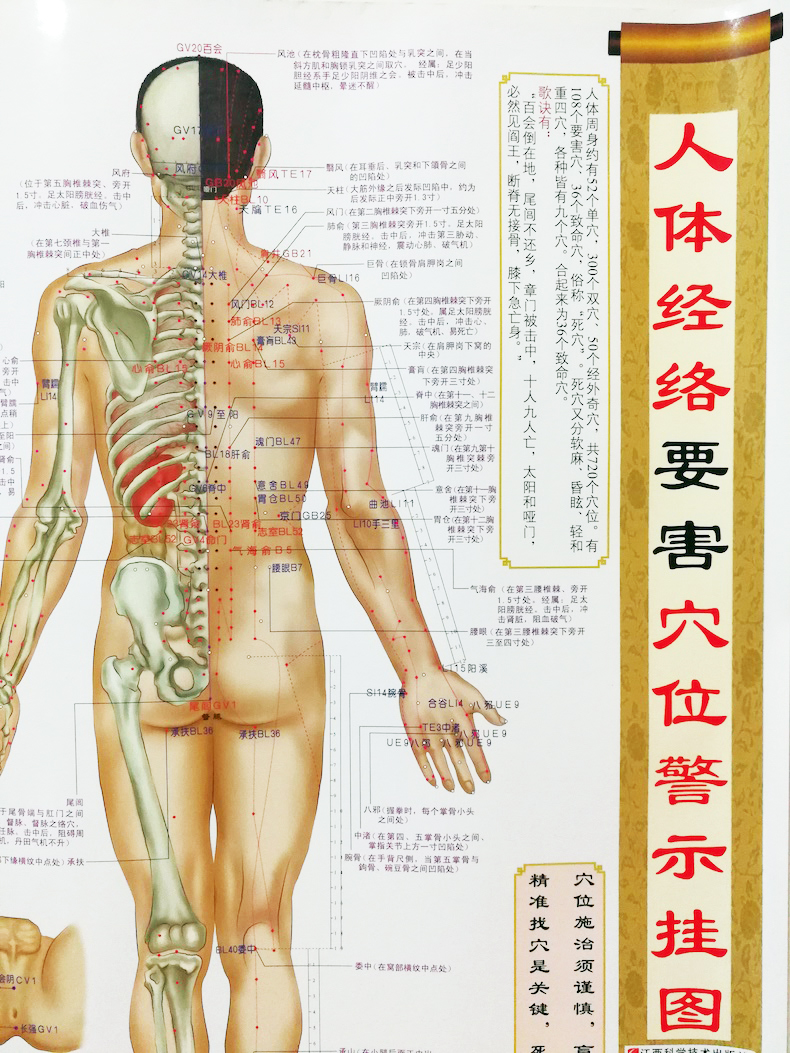 Detail Feedback Questions about Human's Dangerous Acupuncture Points
