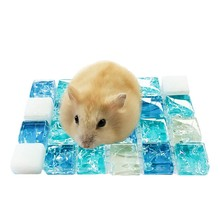 2019 Summer Sleeping Mat Small Pets Hamster Cooling Bed Plastic Pet Pad for Chinchilla Guinea Pigs Squirrel Cage