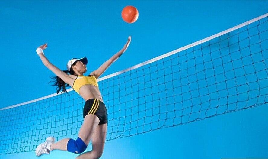 Good Deal  International Match Standard Official Sized Volleyball Net Netting Replacement