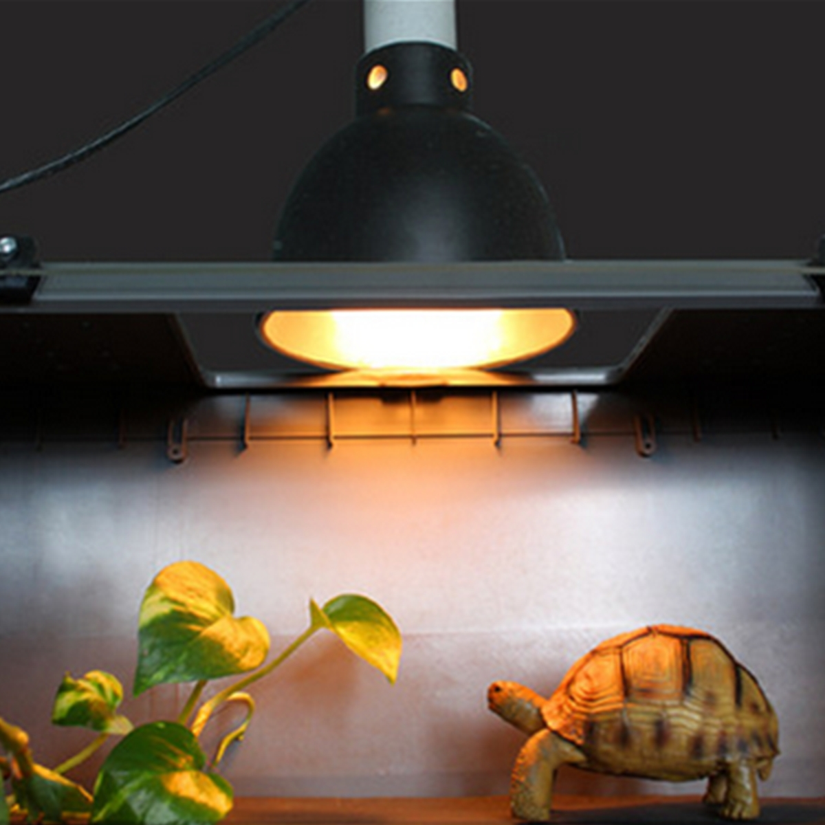 tortoise lighting. Ceramic Heat UV UVB E27 Lamp Light Holder For Aquarium Amphibians Reptile Tortoise Lampshade Brooder Basking With Switch-in Covers \u0026 Shades From Lighting