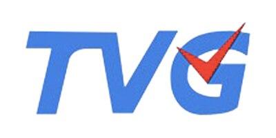 Лого бренда Твг из Китая