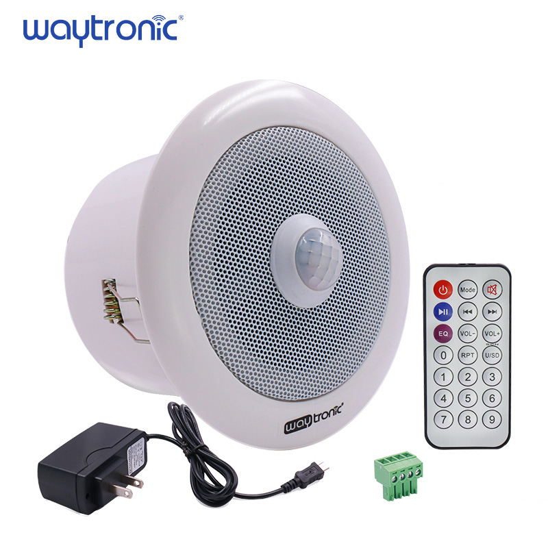 In Ceiling PIR Motion Sensor Induction Audio Amplifier Speaker MP3 USB Download Voice Announcer Safety Reminder for shop bazaar